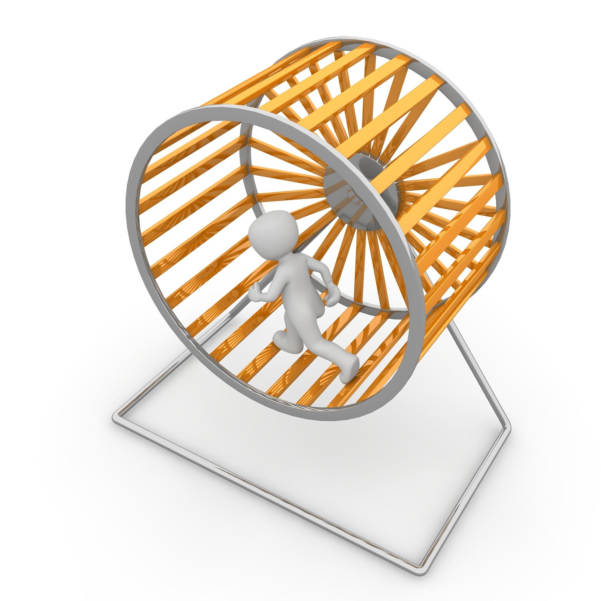 hamster-wheel-1014036_1920